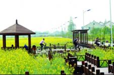 创新打造农电商生态圈 培育农村新增长极