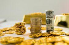 南沙减税降费初显效 助力绿色金融发展